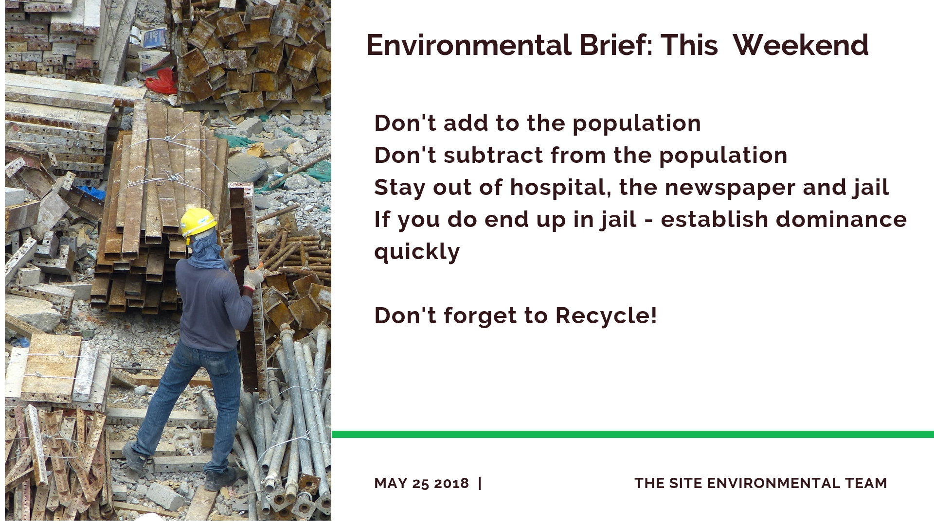 Environmental Brief